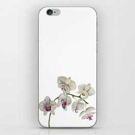 Orchid Watercolor Painting iPhone Skin