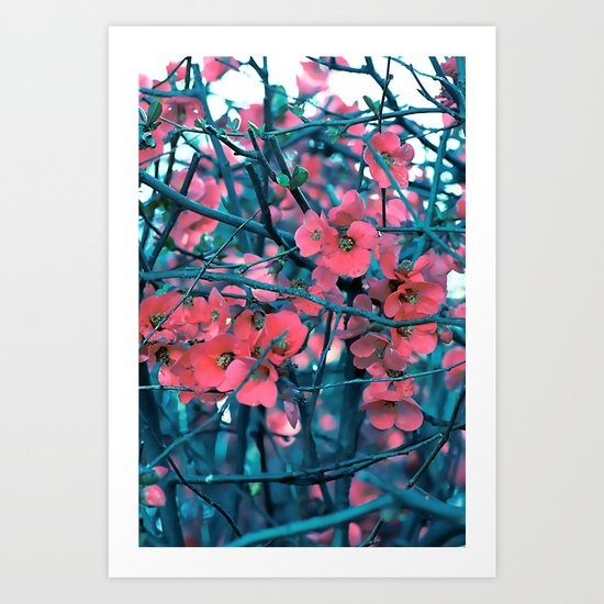 Floral abstract(61) Art Print
