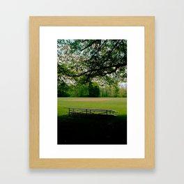 Bleachers Framed Art Print