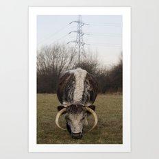 Cow, London Art Print