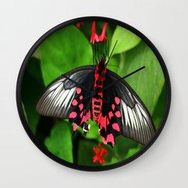Batwing  Butterfly Wall Clock