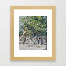 Tree throwing Shadows Framed Art Print