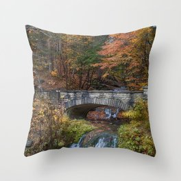 the Stone Bridge Throw Pillow