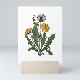 Vintage Botanical Style Dandelion Illustration Mini Art Print