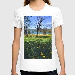 Springtime Comes to Lake Murray, La Mesa, CA T-shirt