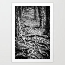 Rootway 2012 - black edition Art Print