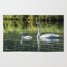 Cygnet with Father Rug