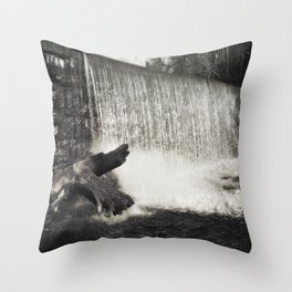 Silver Falls photography Throw Pillow