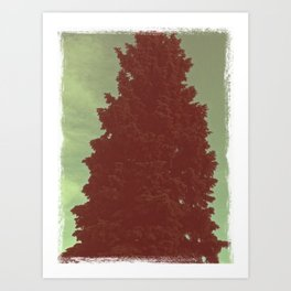 Vintage Pine Art Print