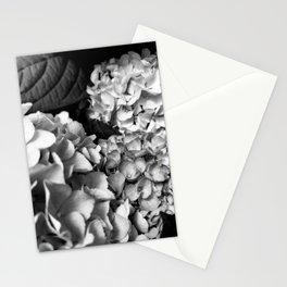 Hydrangeas Black and White Stationery Cards