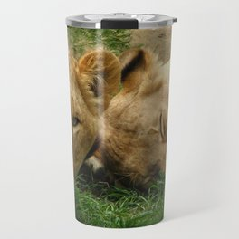 Asian Lions (Panthera leo persica) Travel Mug