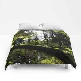 Dream Green Comforters