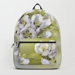 Spring 0103 Backpack