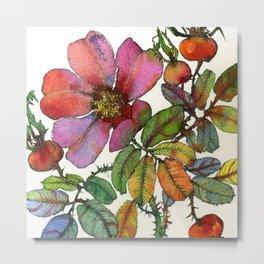 Tea Rose Metal Print