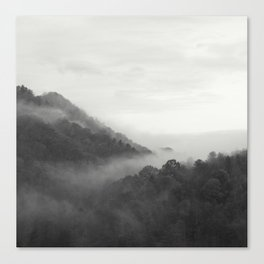 hill forest Canvas Print