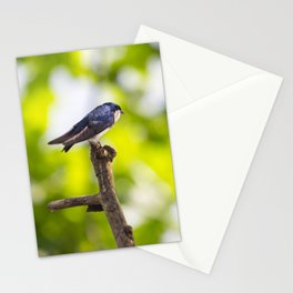Little Blue Tree Swallow Stationery Cards