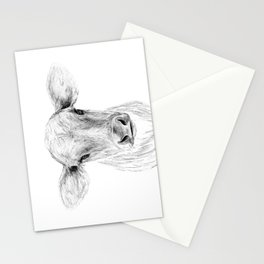 Moo ::  A Young Jersey Cow Stationery Cards