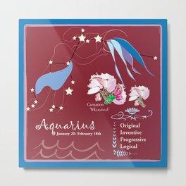 Aquarius January Metal Print