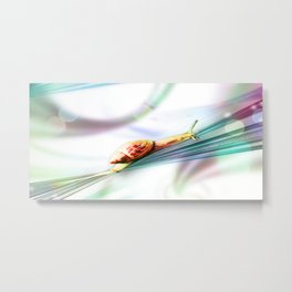 The Snail (Pretty Bokeh Background) Metal Print