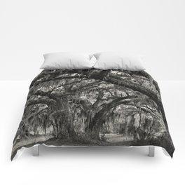 Live Oaks with Spanish Moss, Georgia Comforters