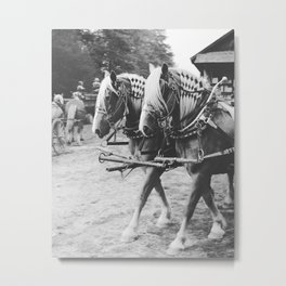Working Draft Horses Metal Print