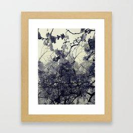 Summertime Sadness Framed Art Print