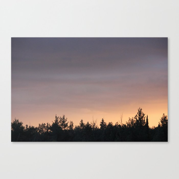 What is Life? Canvas Print