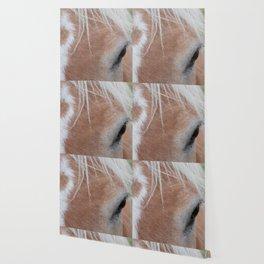 Equine Cowlick Wallpaper