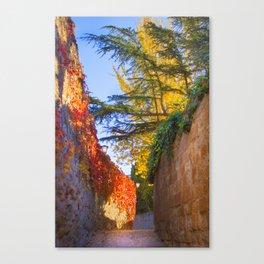 Zamora no Outono Canvas Print