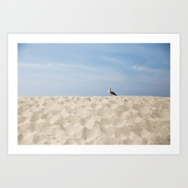 The Single Seagull in the Sand Art Print