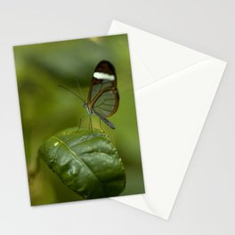 Transparent butterfly Stationery Cards