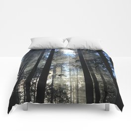 Sunlight Shines Through the Trees Comforters