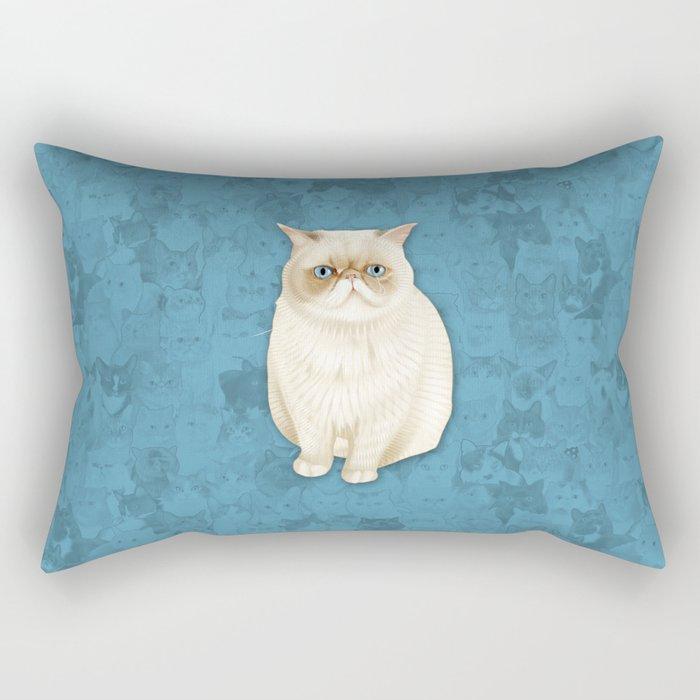 puddle Rectangular Pillow