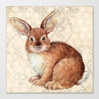 rabbit Canvas Prints featuring Rabbit by Patrizia Ambrosini