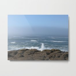 Splashing Up Metal Print
