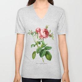 Vintage Rose - Redoute's Rosa Centifolia Foliacea Unisex V-Neck