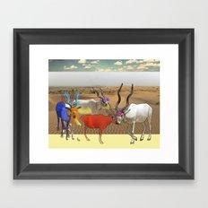 Addax Framed Art Print