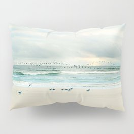 flight Pillow Sham