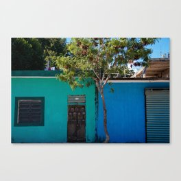 The in-between. Canvas Print