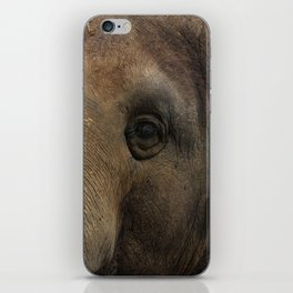 Elephant closeup iPhone Skin