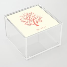 AFE Branch Coral, Living Coral Acrylic Box