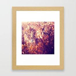 Illumination Framed Art Print