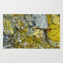 Golden Fish Rug