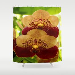 Joy And Happyness Shower Curtain