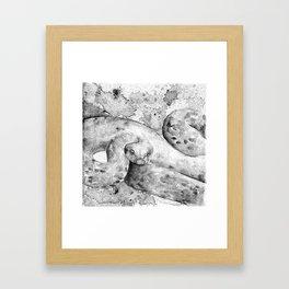 black and white : snake Framed Art Print