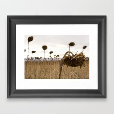 Mourning Field  Framed Art Print
