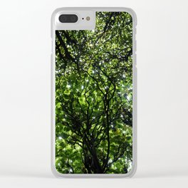 umbrella of trees Clear iPhone Case