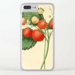 THE BOSTON PINE STRAWBERRY Clear iPhone Case