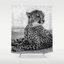 B&W Cheetah Cub 4 Shower Curtain