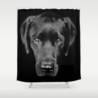 labrador Shower Curtains featuring Black Labrador by Grow Every Day